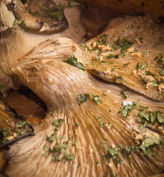 Cardulin'e petza: il fungo buono come una bistecca
