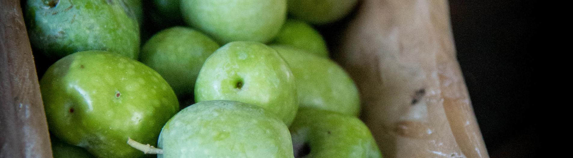 Olio e olive, condimento, medicina, bellezza e magia